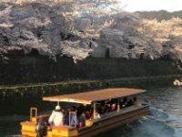 花が呼び込む春地域華やぐ旅の旬