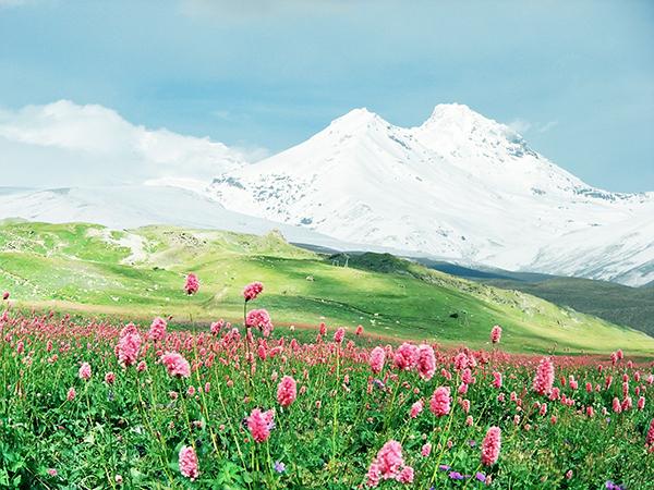 中国雲南省の高山