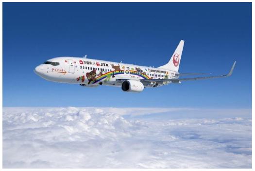 JAL特別塗装機