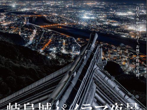 夏の岐阜城パノラマ夜景