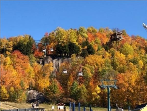 ローレンシャン高原の紅葉